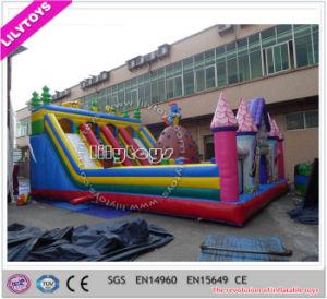 Newest Design Hot Inflatable Factory Amusement Park Wit Ce pictures & photos