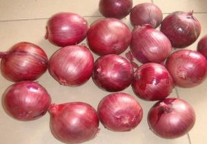 High Quality New Crop Fresh Red Onion (3-5cm) pictures & photos