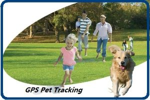 GPS Pet Tracking pictures & photos