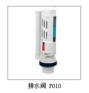 Dual Flush Valve (P010)