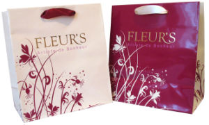 Superior Cosmetic Paper Bag (YY--B0320) pictures & photos