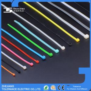 94V-2 Flame-Retardant Plastic Zip Tie Self-Locking UV Nylon Cable Tie pictures & photos