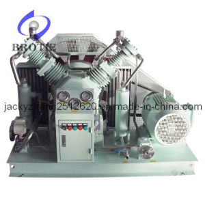 Brotie Oilless CO2 Gas Compressor pictures & photos