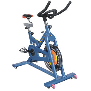 Exercise Bike (690)