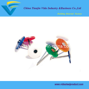 Plastic Cap Nails with Best Price pictures & photos