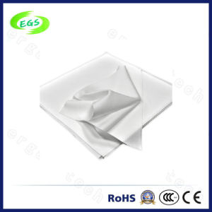 9 Inch 1009sle Polyester Cleanroom Wipe for Cleaning Sensitive Surface pictures & photos