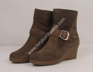 Snow Boot (5593) /Fashion Boots