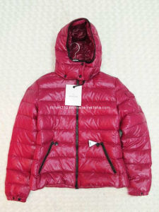2012 Ladies Fashion Down Jacket