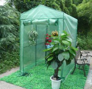 Greenhouse (G2000)