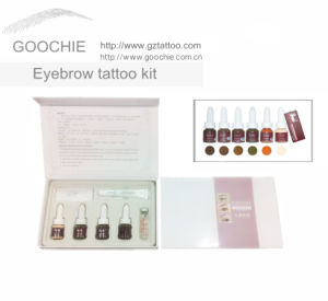 Professional Eyebrow Pigment Tattoo Kit pictures & photos