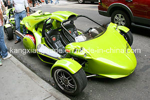 Tricycle Motorcycle / 3 Wheel Motorcycle / Trike Motorcycle (T-REX 14R)