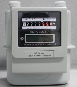 Prepaid Gas Meter (CG-FL-1.6)