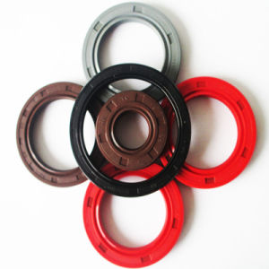 NBR FKM Tc Oil Seal, Rubber Seal, Seal Ring Manufacturer pictures & photos