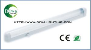 T8 Fluorescent Fitting with CE, RoHS, IEC Approval (DW-T8DUX) pictures & photos