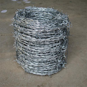 Iron Galvanized Cheap Barbed Wire for Sale pictures & photos