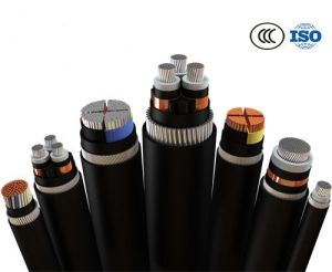 6/6kv, 8.7/10kv, 26/35kv XLPE Insulated Power Cable Underground Use pictures & photos
