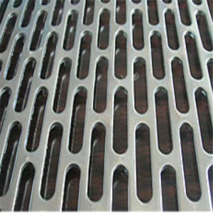 (Hot sale) Perforated Metal Plate Mesh pictures & photos