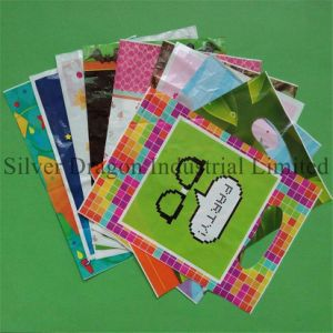 Customized Wholesale LDPE Gifts Bag pictures & photos
