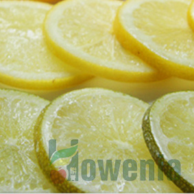 IQF Lemon/Lime Slices & Fresh
