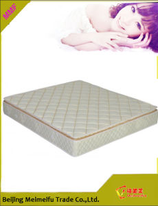 Pocketed Coil Spring Mattresses