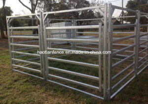 Portable Yard Panel Heavy Duty 6 Oval Rail - Cattle Yards Horse Panels and Gates pictures & photos