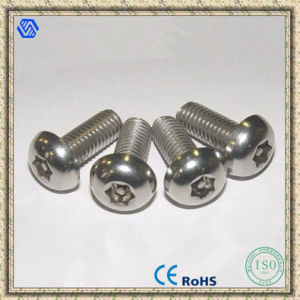 Stainless Steel Screw, Stainless Steel Anti-Theft Screw Bolt pictures & photos