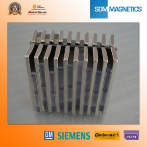 Heat Resisting Permanent Magnet pictures & photos