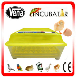 Automatic Mini Duck Eggs Incubator for Hatching 48 Duck Eggs with CE Approved pictures & photos