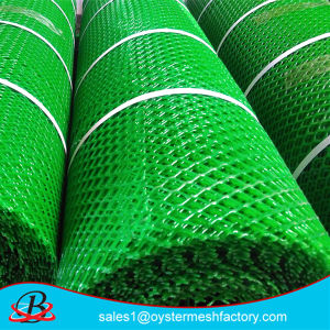 PE Netting Plastic Mesh in Good Quality pictures & photos