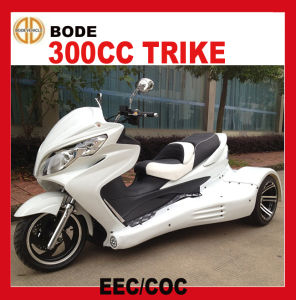 New 300cc Automatic ATV Quad EEC (MC-393) pictures & photos