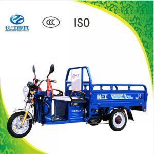 China Popular 3 Wheel Electric Tricycle for Old Man with Competitive Price