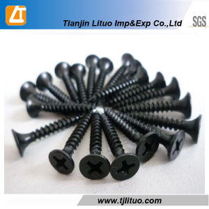 Factory Bugle Head Phillips Drive Drywall Screw pictures & photos