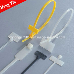 Brand Plate Type Nylon Cable Tie pictures & photos