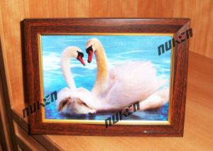 2015 3D Pictures Home Decoration with Animals pictures & photos
