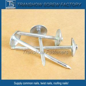 6-13 Bwg Galvanized Umbrella Head Roofing Nails pictures & photos