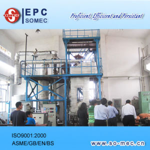 Palm Plantation Power Plant Biomass Boiler Combustion Test pictures & photos