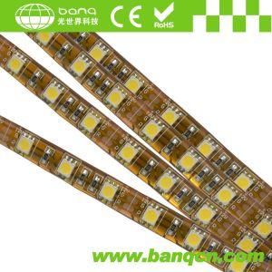 5050SMD LED Strips