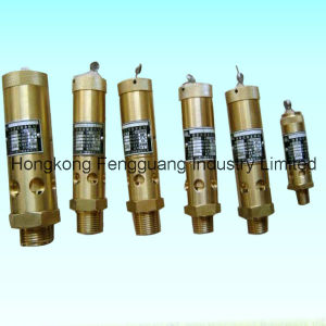 Screw Air Compressor Safety Valve Auto Parts pictures & photos