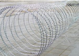 Hot Sale Razor Barbed Wire Mesh Fence pictures & photos