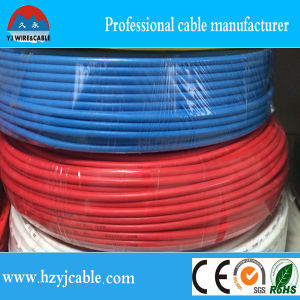 Bs6004 White Sheathed Ren&Blue Insulation 2core +E Flat Electrical Earth Cable pictures & photos