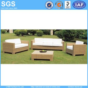 Modern Design Yellow Rattan Sofa Patio Furniture (LN-015) pictures & photos