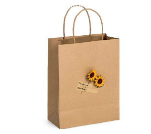 Paper Carrier Bags White Brown Kraft Takeaway Party Lunch Food Flat Handles pictures & photos