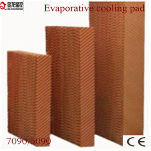 Evaporative Cooler for Greenhouse pictures & photos