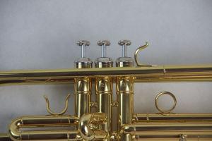 Popular Trumpet/ Student Trumpet (TR-100) pictures & photos