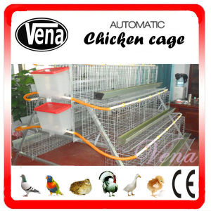 Automatic Full Deep Galvanized Chicken Layer Cage pictures & photos
