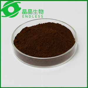 Pure Duanwood Reishi Mushroom Extract Powder pictures & photos