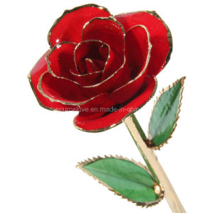 ... Gold Red Rose (MG016) - China 24k Gold Dipped Rose, Solid Color Gold