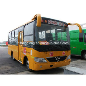 High Quality School Bus with 26 Seats pictures & photos