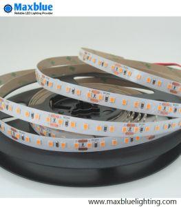24VDC LED SMD2835 Flexible LED Strip Light/LED Light Strip pictures & photos