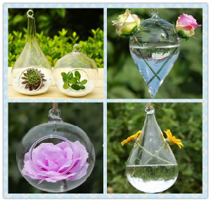 Hot Sale Clear Glass Vase /Home Decoration Flower Glass Vase with Flower pictures & photos